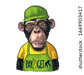 monkeys fast food worker... | Shutterstock .eps vector #1669903417