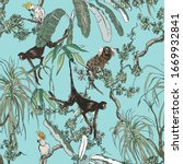 Monkeys And Exotic Parrot Birds ...