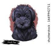Schnoodle Puppy Digital Art...