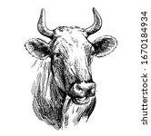 breeding cow. animal husbandry. ...   Shutterstock .eps vector #1670184934