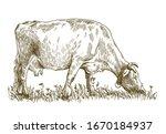 breeding cow. animal husbandry. ...   Shutterstock .eps vector #1670184937
