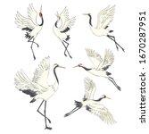 Crane Bird Set. Illustration O...