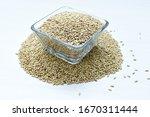 Seed Of Birdseed  Food For...