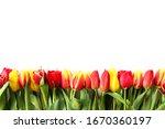 celebration  multiple flowers... | Shutterstock . vector #1670360197