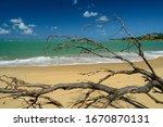 Pipa Beach  Tibau Do Sul  Near...