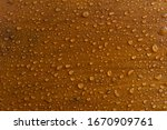 Water Droplets On The Wood Floor