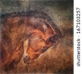 Horse Portrait In Old Oil...