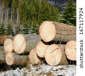 wood preparation | Shutterstock . vector #167117924