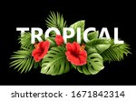 exotic tropical hibiscus... | Shutterstock .eps vector #1671842314