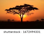 Beautiful Sunset At Serengeti...
