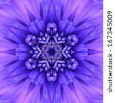 Blue Concentric Flower Center...