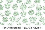 aloe vera background  agave... | Shutterstock .eps vector #1673573254
