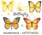 Butterflies Yellow  Black ...