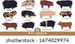 farming today set of twelve...   Shutterstock .eps vector #1674029974