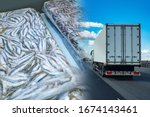 Small photo of Transportation of frozen food. A refrigerator truck transports frozen seafood. Fish briquettes on the background of a truck. Logistics in the fishing industry.