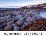 \'dinosaur Eggs\' Beach With...