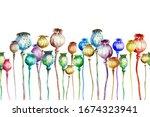 Multi Colored Poppy Capsules On ...