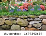 Dry Stone Wall And Colorful...