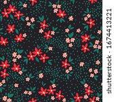 floral pattern. pretty flowers... | Shutterstock .eps vector #1674413221