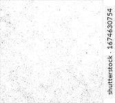 vector grunge black and white.... | Shutterstock .eps vector #1674630754