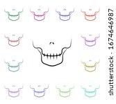 skeleton  dental multi color...