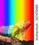 Large Chameleon  Sitting On A...