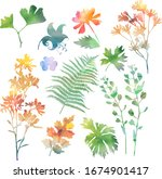 collection of variable plants...   Shutterstock .eps vector #1674901417