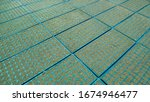farmer planting tray helps to...   Shutterstock . vector #1674946477