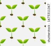 Little Plants Seedlings...