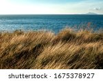 golden meadow with turquoise...   Shutterstock . vector #1675378927