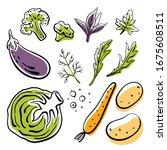 cabbage  eggplant  broccoli ... | Shutterstock .eps vector #1675608511