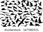 vector set of silhouettes of 60 ... | Shutterstock .eps vector #167580521