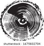 tire wheel. brush stroke... | Shutterstock .eps vector #1675832704