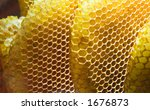 A closeup view of honeycombs - stock photo