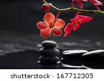 Spa Concept  Branch Orchid Wit...
