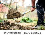 Small photo of Man boot or shoe on spade prepare for digging. Farmer digs soil with shovel in garden, workers loosen black dirt at farm, agriculture concept autumn detail.