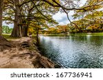 beautiful fall foliage... | Shutterstock . vector #167736941