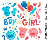 baby gender reveal party. baby... | Shutterstock .eps vector #1677376567