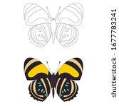 vector  isolated  sketch ... | Shutterstock .eps vector #1677783241