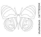vector  isolated  sketch ... | Shutterstock .eps vector #1677783244