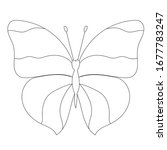 sketch  outline  butterfly ... | Shutterstock .eps vector #1677783247