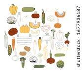 vegetables. set of vector hand... | Shutterstock .eps vector #1677936187