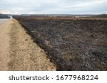 Burned Field After A Strong...