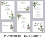 watercolor cotton and...   Shutterstock . vector #1678428847