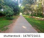 Walking Path Through A Park In...