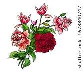 pink  red roses flowers design... | Shutterstock .eps vector #1678840747