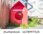 Cat Cabin Stands On Street. ...