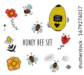Beehive  Apiary With Various...