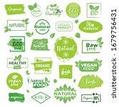 big set of fresh eco organic... | Shutterstock .eps vector #1679756431
