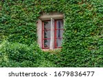 Window With Red Frame On Ivy...